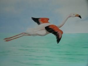 flamingos Wohnzimmer privat